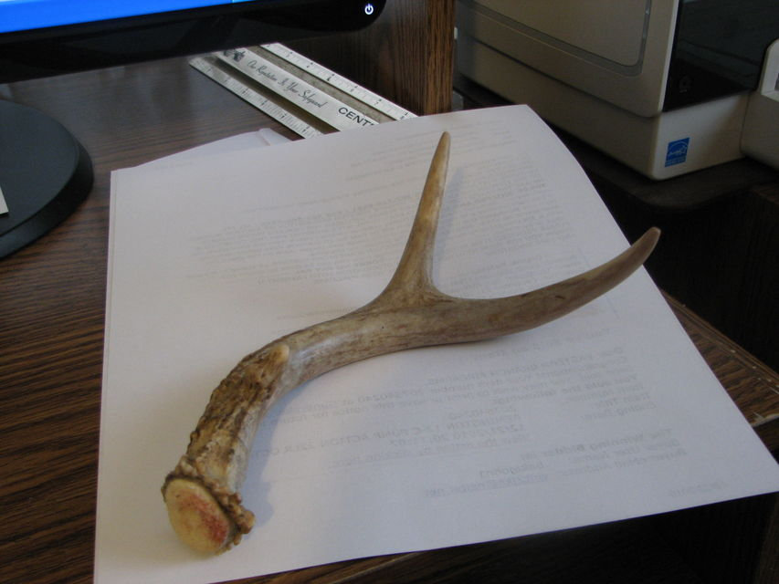 Click to view full size image  ==============  WATTARAK!!!!!! Shed antler buck taken with Knight Shadow 50 cal. Nice meat animal!