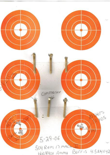 Click to view full size image  ==============  LIGHT EM UP rem 504 17 mach II . HORNANDY AMMO . BURRIS 4X12 .   SHOOTING THE HEADS OF MATCH STICKS AT 50 YDS
