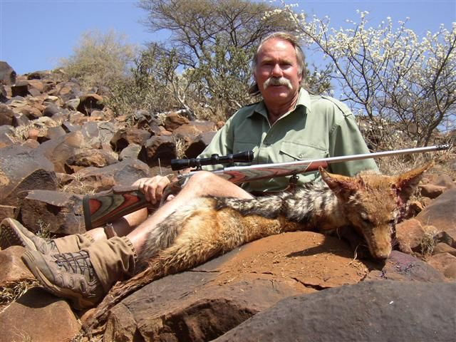 Jackal Eastern Cape of South Africa, Sep 2007