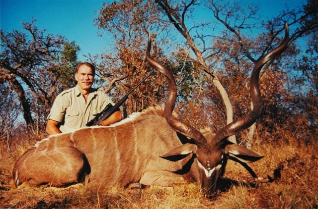 Kudu  Limpopo region of South Africa