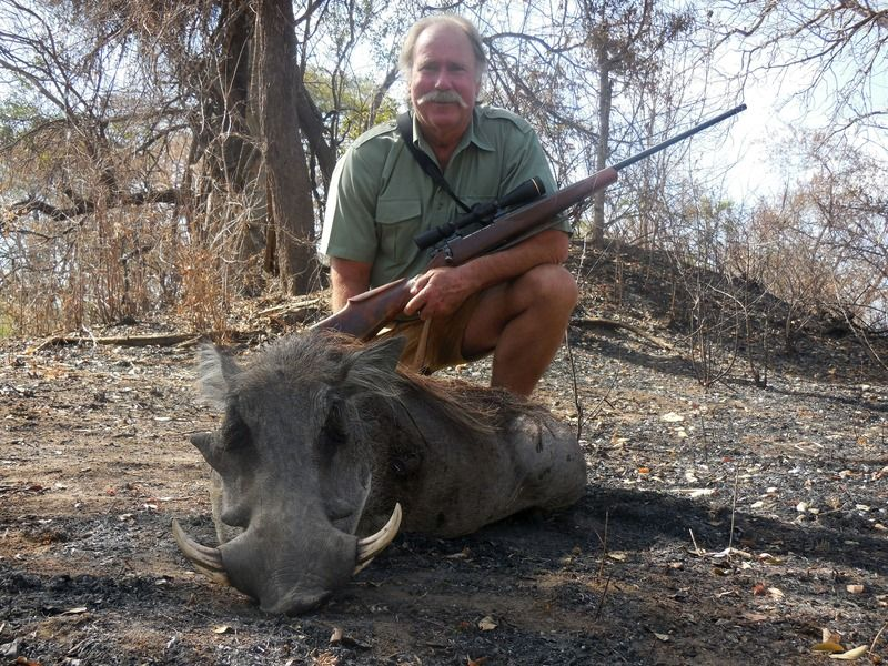 Warthog Hunting with TMS Safaris