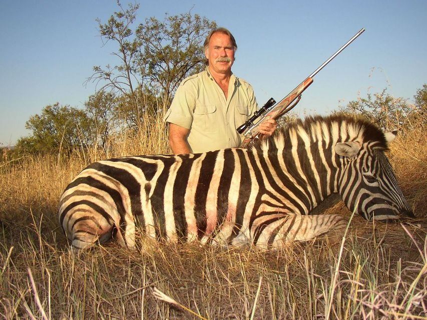 Click to view full size image  ==============  Burchell's Zebra Kwa-Zulu Natal, South Africa, 2005