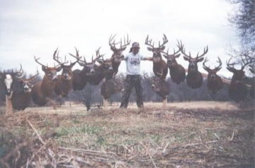 Group shot.. Old pic. Its missing alot of the new bucks. But its still cool.