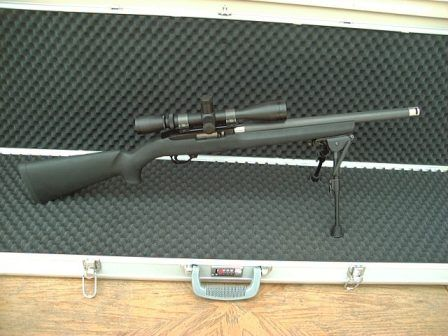 Ruger 22 with butler creek conversion