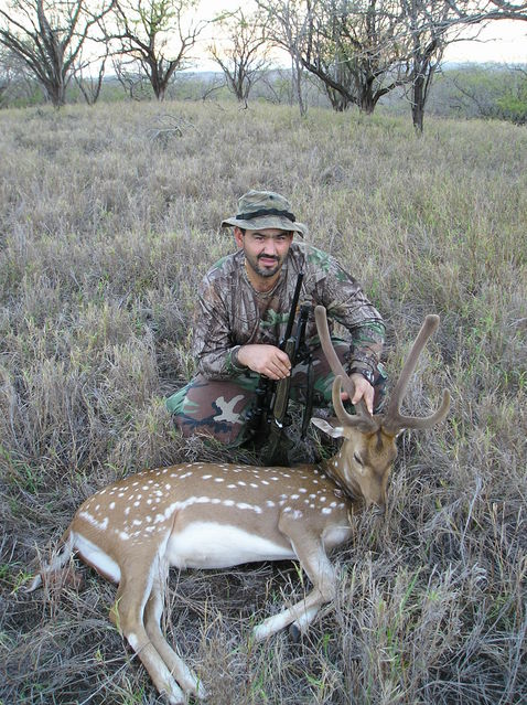 Click to view full size image  ==============  Axis buck