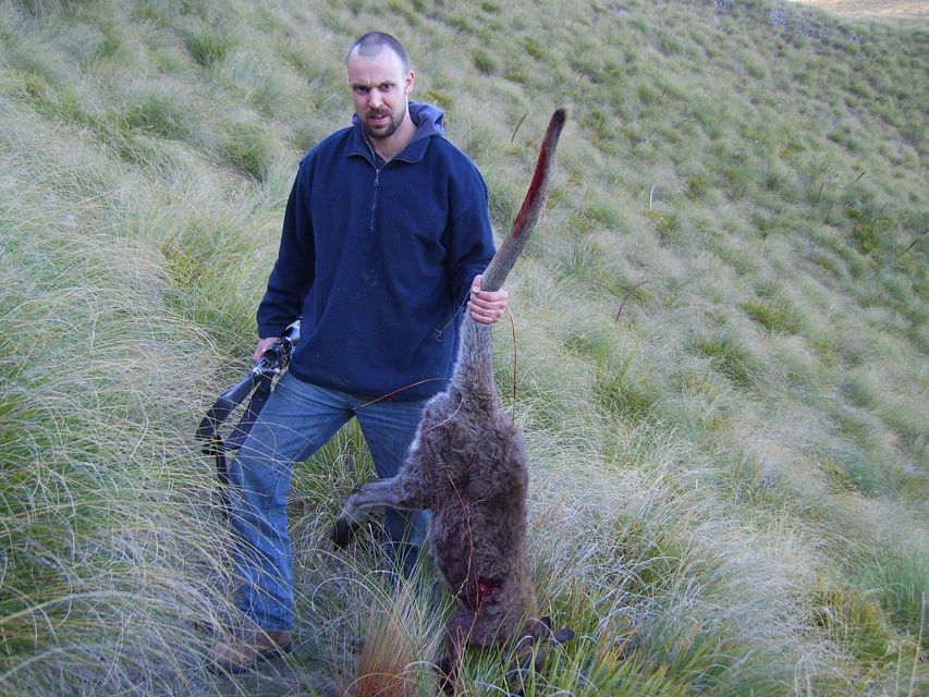 Click to view full size image  ==============  Wallaby hunt - Vaughan ( Ch-ch NZ )